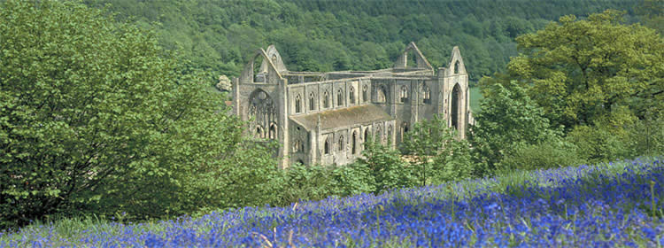 Tintern Abbey - Wye Valley Walking Holiday